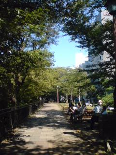 天気がよいのでお昼休みにお散歩。