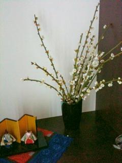 Photo_20100225